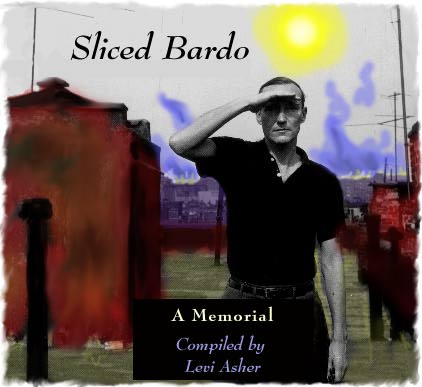 Sliced Bardo: a tribute to William S Burroughs